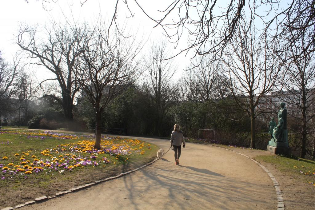 Ørstedsparken med forårssteminig på toppen af den store bastion. Foto den 16. marts 2015 af Erik K Abrahamsen