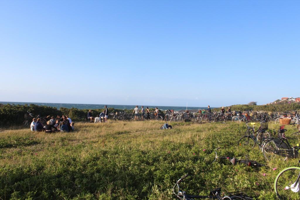 Hygge på skrænter ved Tisvildeleje Strand. Foto i retning øst mod Tisvildeleje den 18. juli 2015 af Erik K Abrahamsen