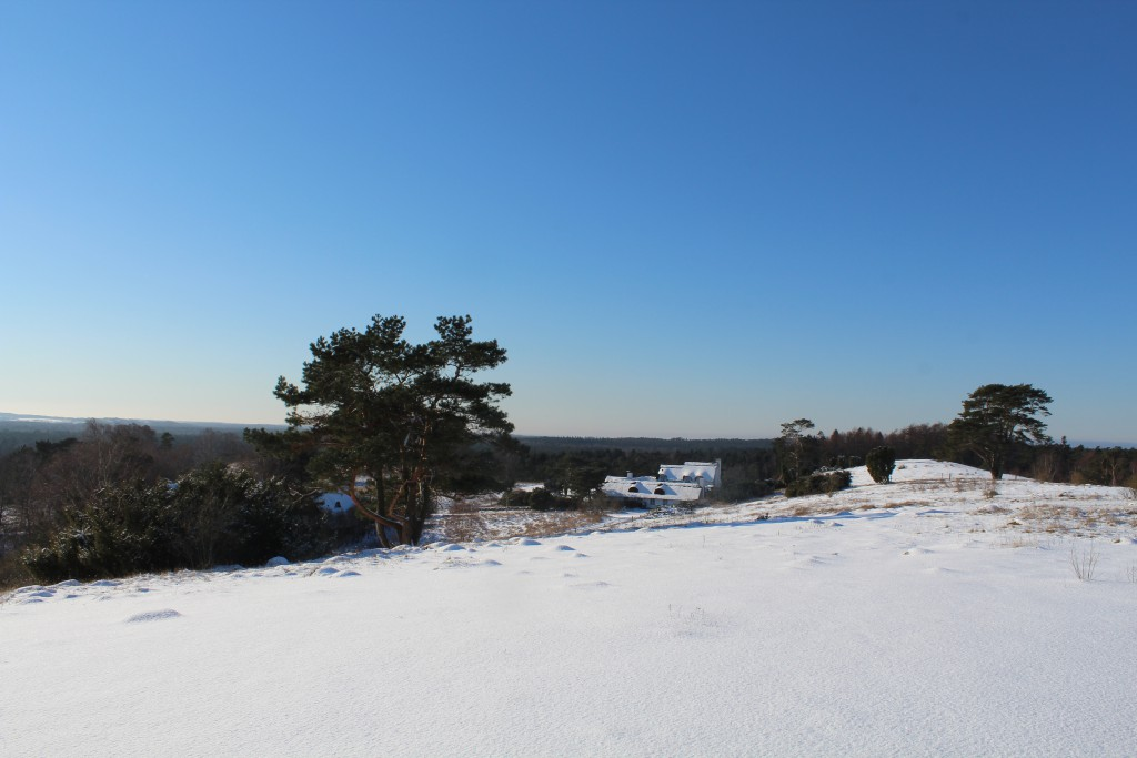 "Tibirke Hills. Viewpoint ""Udsigten"". View in direction west 5. february 2015 by Erik K Abrahamsen."