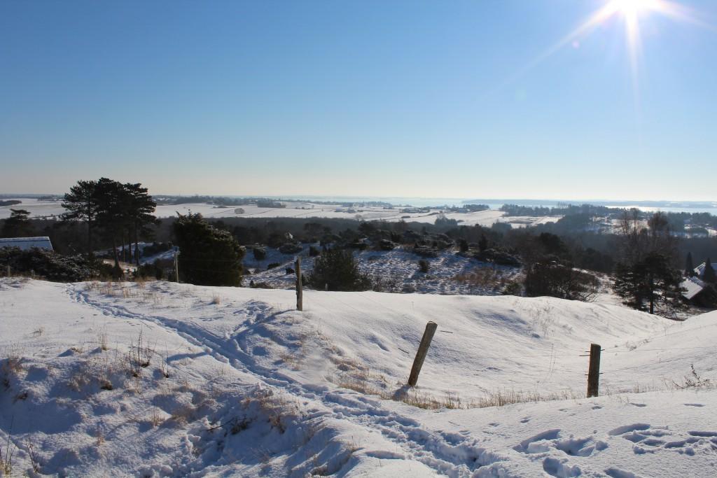 "Tbirke Hills. Viewpoint ""Udsigten"". View in direction southwest to Arrsoe lake 5. february 2015 by Erik K Abrahamsen"