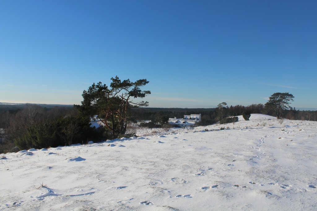 View from Udsigten in direction west. Photo about 1 PM the 21