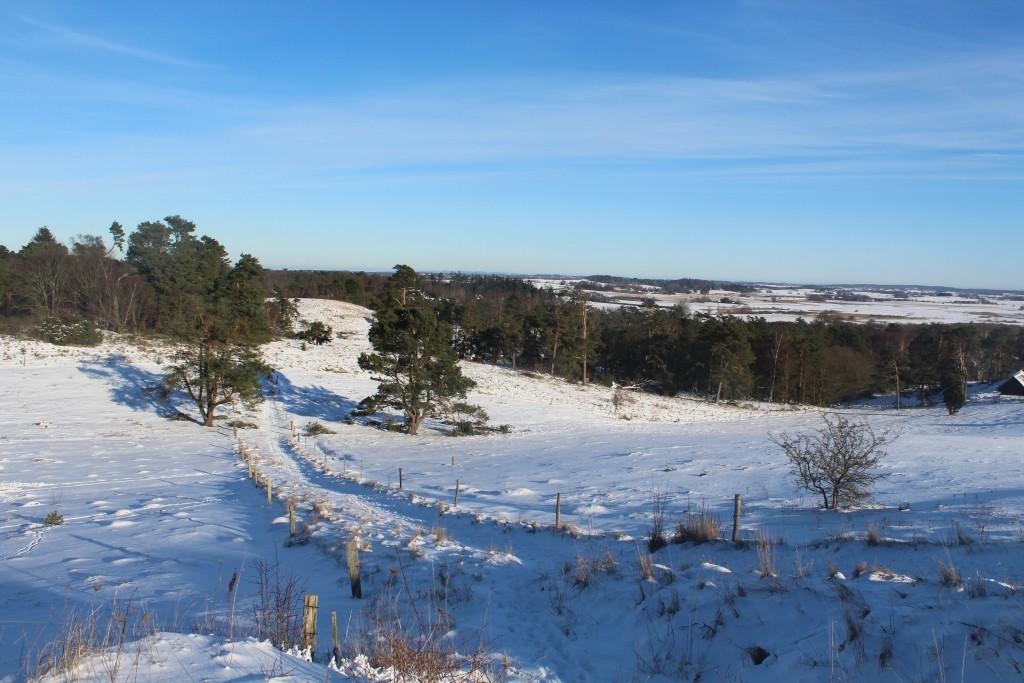 Udsigten, Tibirke Bakker. View in direction east. Pho