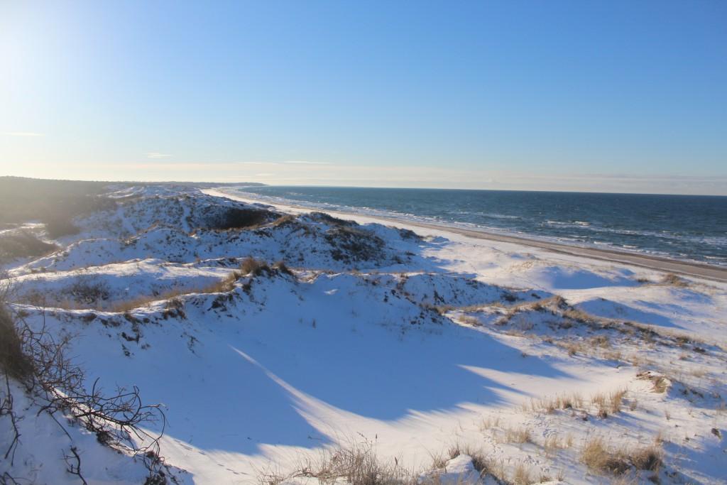 "Kattegat Coast at ""TRoldeskoven"" Beach in Tisvilde Forest. Phot in direction west to Liseleje"