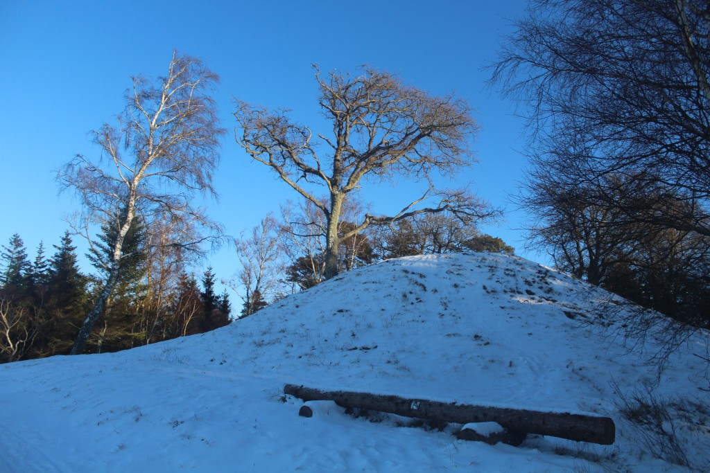 """Burial mounds """"Harehøj"""", Tisvilde Hegn. Photo about 3.15"""