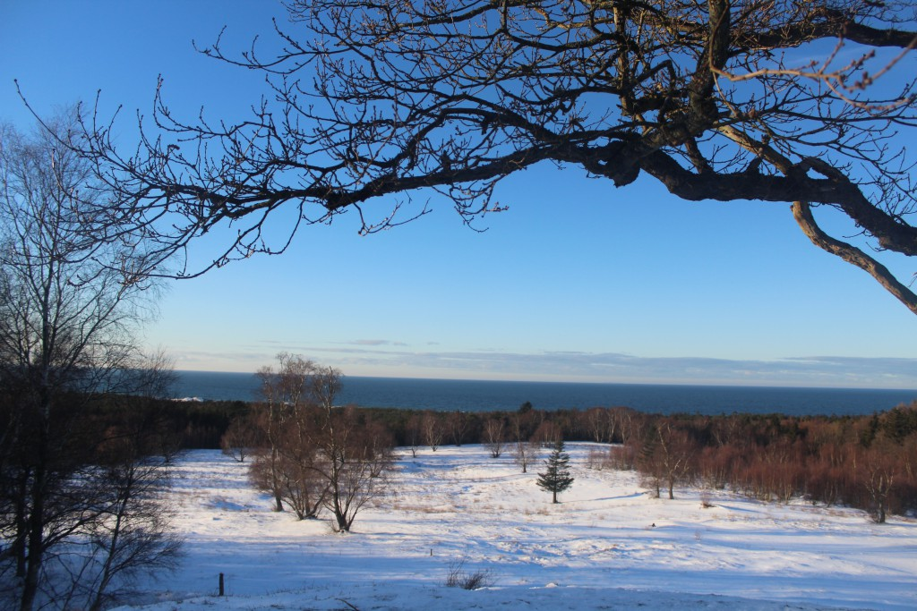 """Tisvilde Hegn. View from burial mounds """""""