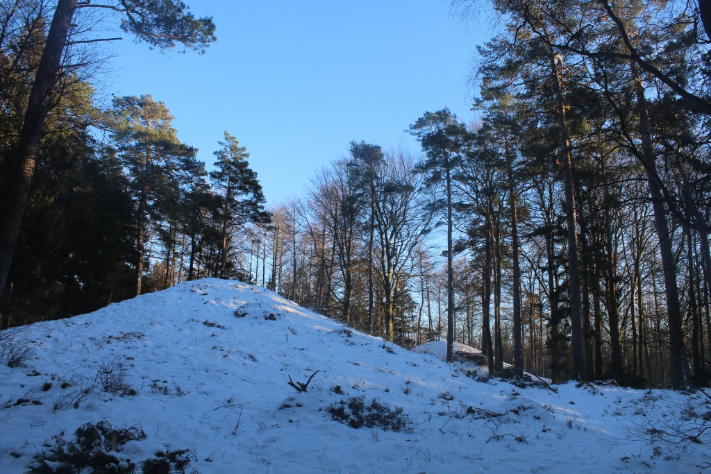 Harehøje butial mounds in Tisvilde Hegn. Phot about 3.15 teh