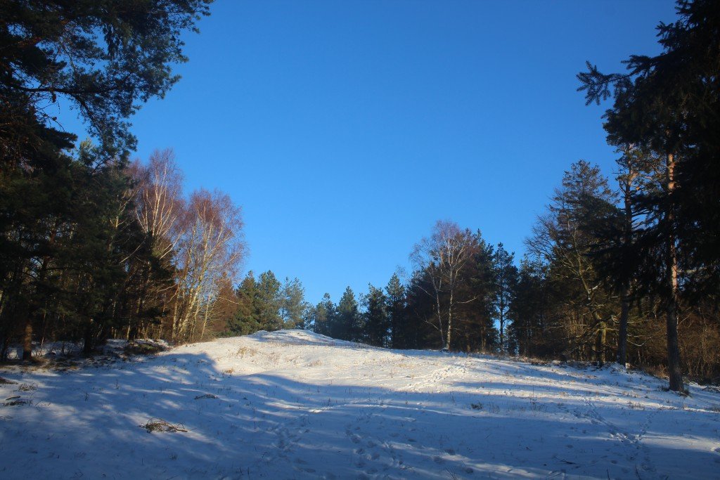 """The valley """"ENEBÆRDALEN"""" with 2 burial mounds on top of smallhill"""