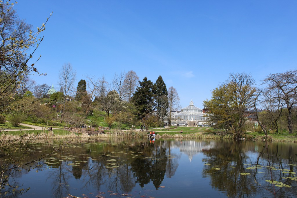 Botanical Garden. View to