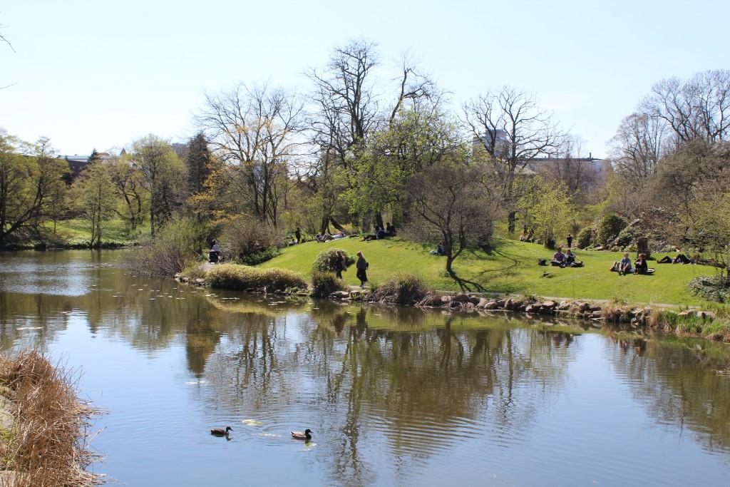 View from White Bridge, Botanical Garden. Photo 2. may 2016 by Erik K Abrahamsen.