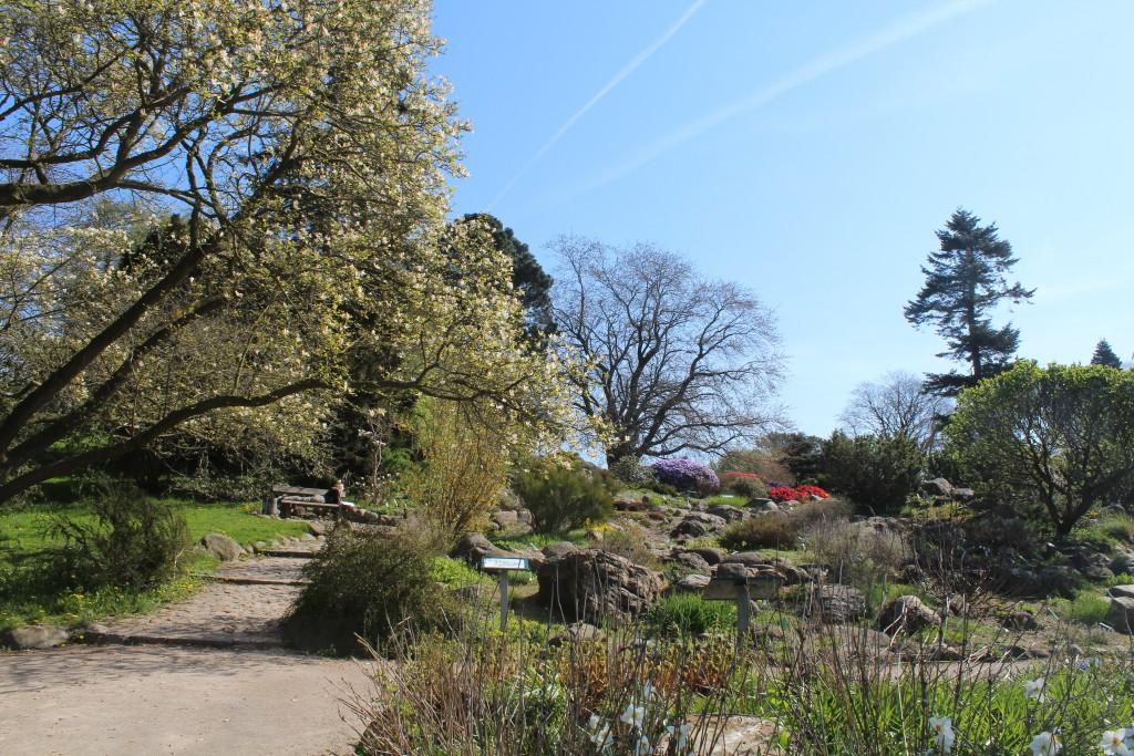 Stone Hill in Botanical Garden. Photo 7. may 2016 by e Erik K Abrahamsen.