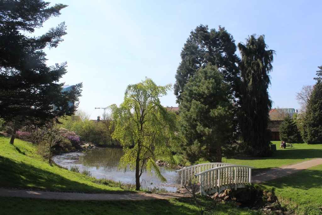 Aarhus Botanical Garden. Photo in direction south to Museum Old City and a scyescraber at left