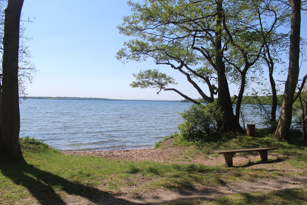 Esrum Lake aand Gribskov Forest. View in direction south-west to Esrum Lake. Photo 12. may 2016 b