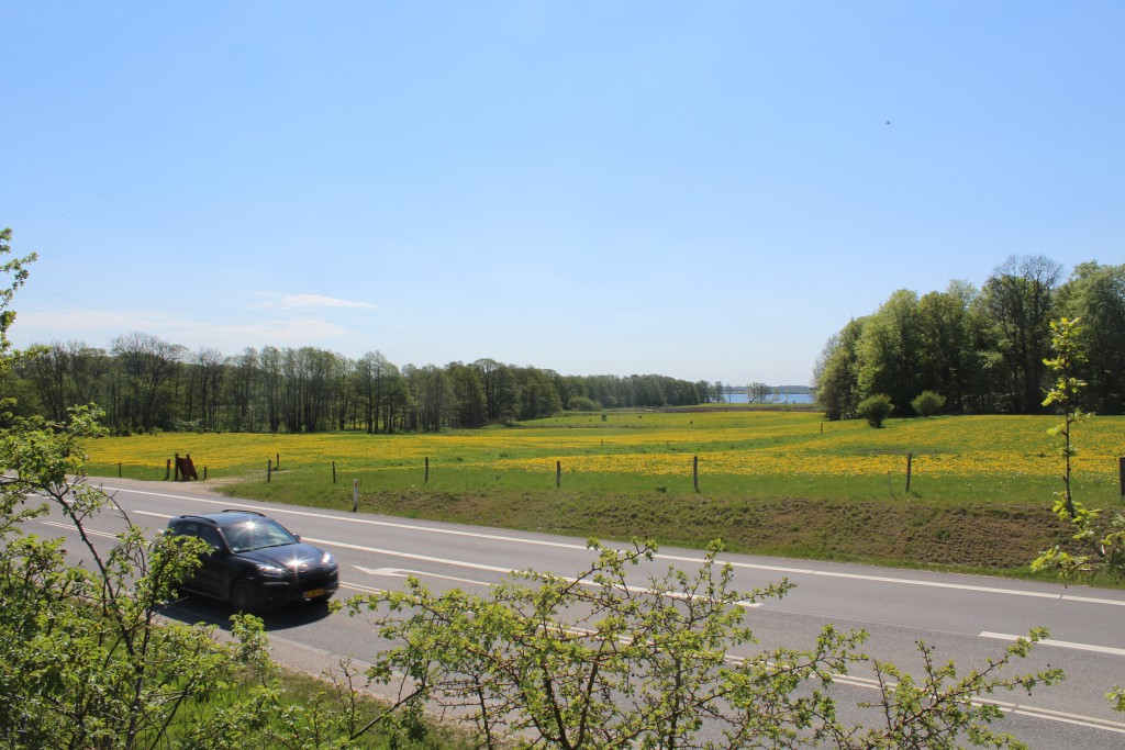 Main Road 205 between Helsinge and HElsinore. View in direction east to Esrum Lake at right. Photo 12. may 2016 by Eri