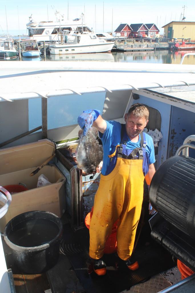 "A fisherman shows a ""stenbidder"""