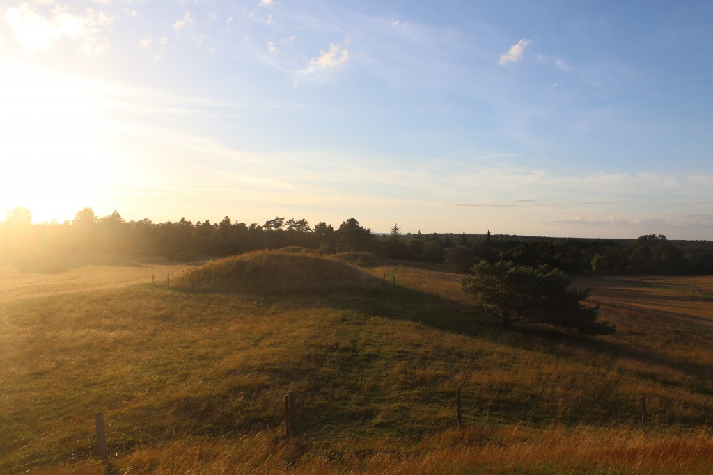 Bureal mounds from Danish Bronze Age 1500 B.C.. Photo in direction to katte Gat Sea 2 km. away july 2016 by Erik K Abtahamsen