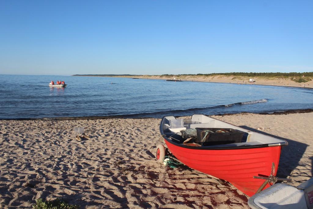 Liseleje Beach at Kattegat Coast. Photo in direction east to Tisvilde hegn 27. july 2016 at
