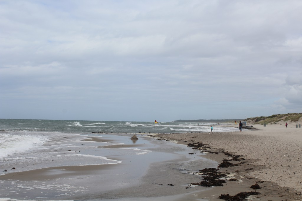 Liseleje Beach, North Sealand. View in direction east to Tisvilde hegn and Tisvildeleje Beach 8 . august 2016 by erik K abrahamsen.