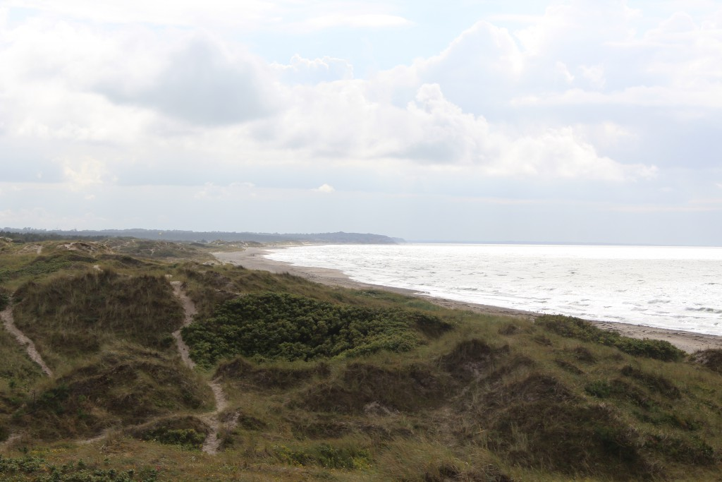 Tisvilder hegn, Troldeskovens beach. Vire in direction west to Jyde beach and Staengehus Beach wirt Liseleje in Horison. Phoot 4 PM 14