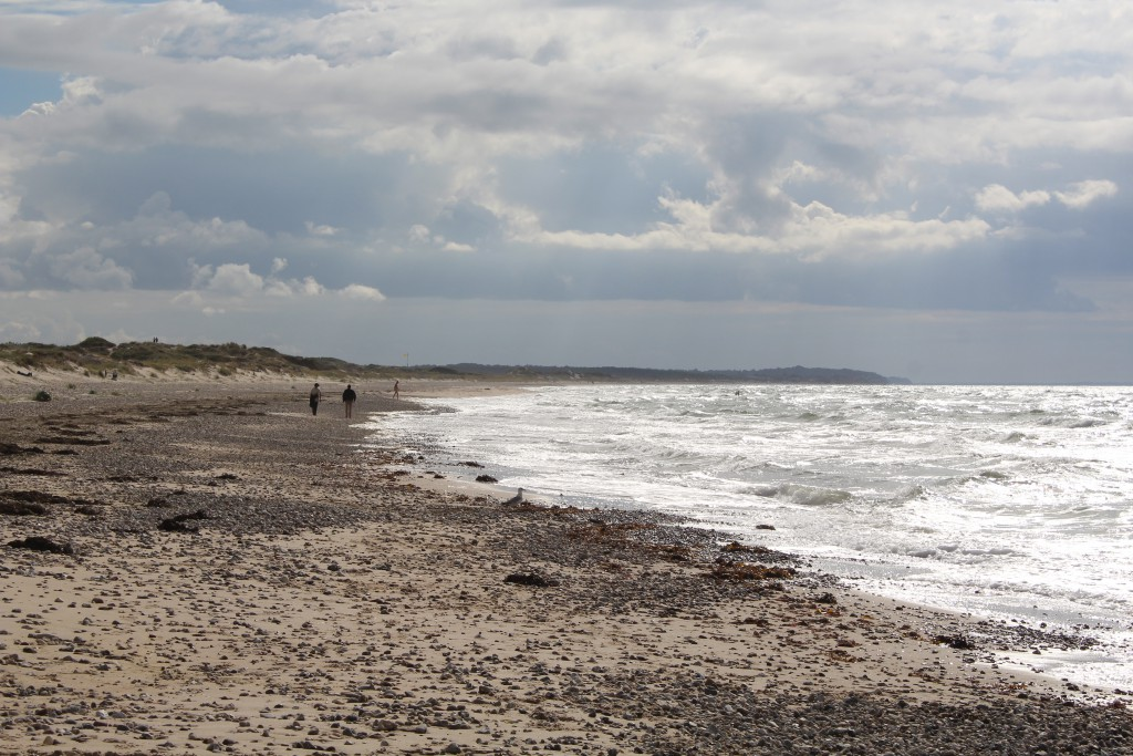 Staengehus beach at Tisvilde hegn. Photo in direction west to kattegat Sea and Liselej
