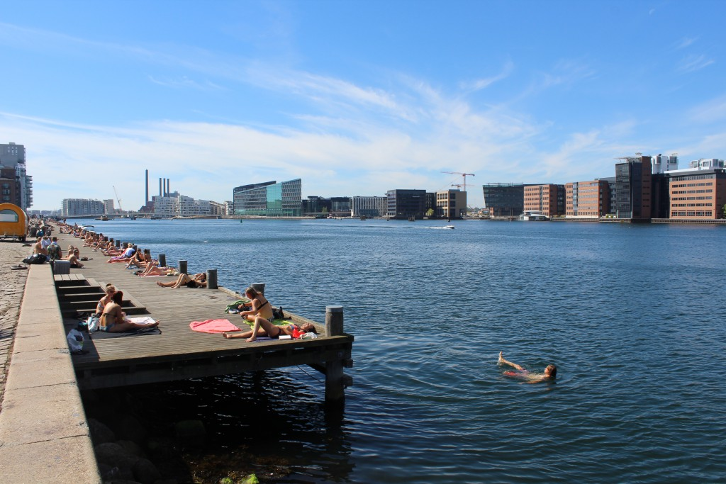 Island Brygge on island Amager at Copenhagen Inner Harbour. Vue in direction west