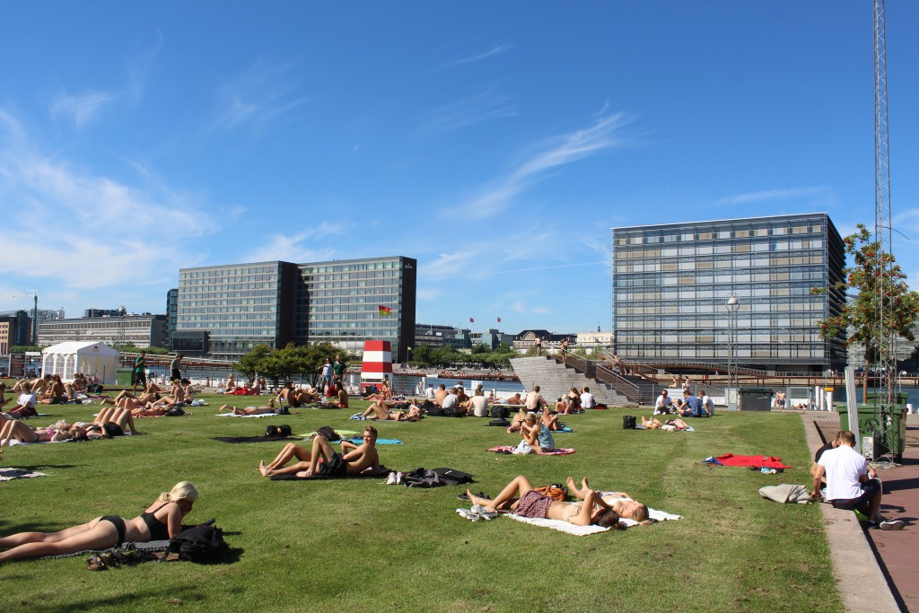 Relaxation on lawns and swimming in Copenhagen Inner Harbour at Island