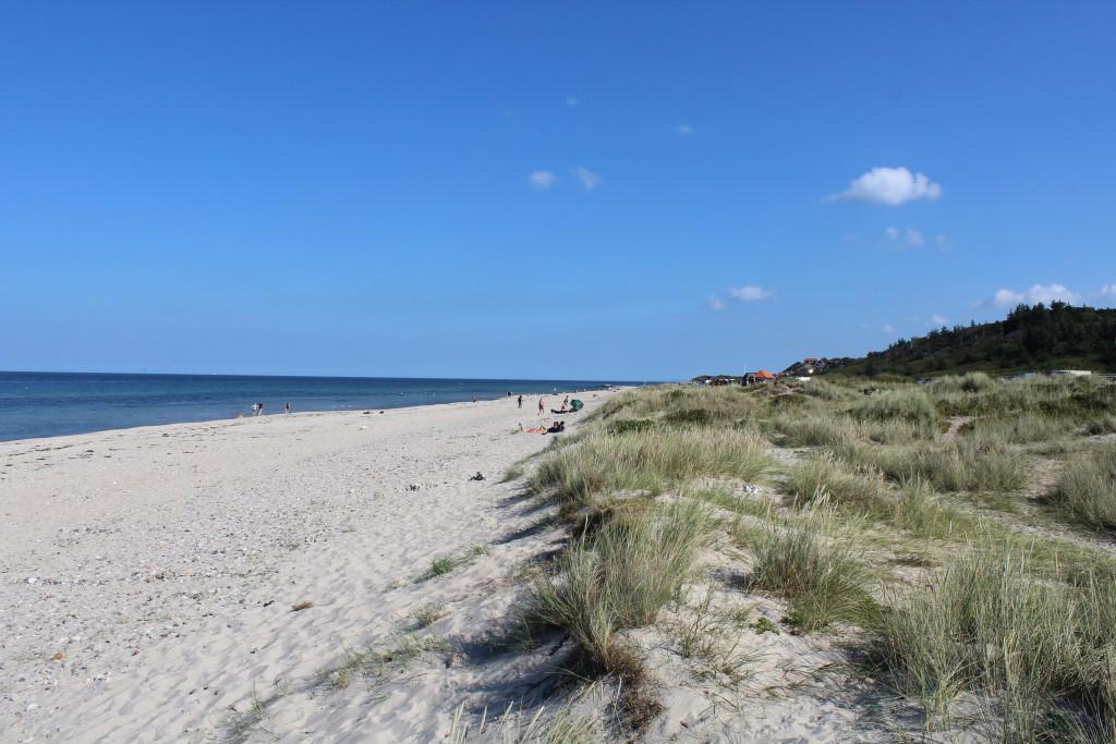 Tisvildeleje Strand. Udsigt mod øst til Tisvildde leg. Foto 10. september 2016 af Erik K Abrahamsen.