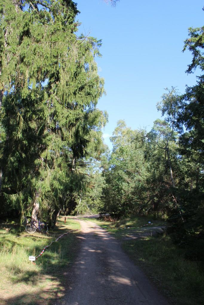 Krydset hvor Kystvejen møder vej mod Jtde Strand og vej op mod Bangshøj og Enebærdalen. Foto i retning vest mod Kystvejen - til høje vej op til Bangshøj
