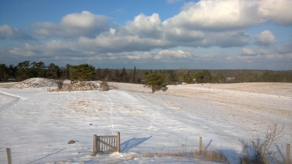 Foto 6 Vinter 2017 Syv Høje