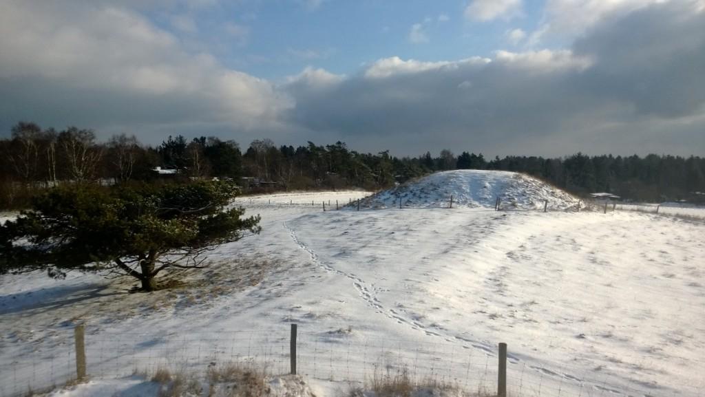 Foto 4 Vinter 2017 Syv Høje