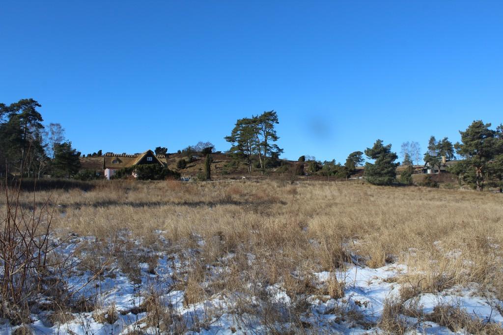 Tibirke Bakker. Vue fra Bækkebrovej mod morænebakker og 2 fritidshuse med oblgatorisk stråtag. Fotoden 12