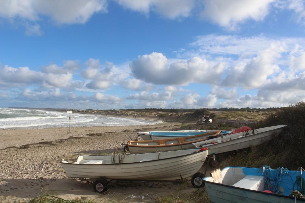 Liseleje strand. udsigt fra PYNTEN mod øst mod Melby Overdrev, isvilde Hegn og Tisvildeleje ude i horisonten. Foto ved 11-tiden søndag den 29. oktober 2017 af Ertik K Abrahamsen.