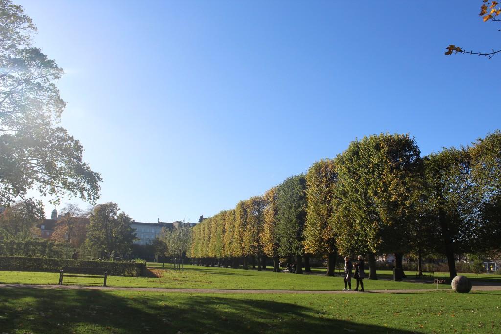 Kongens Have. Foto den 30. oktober 2017 af Erik K Abrahamsen.