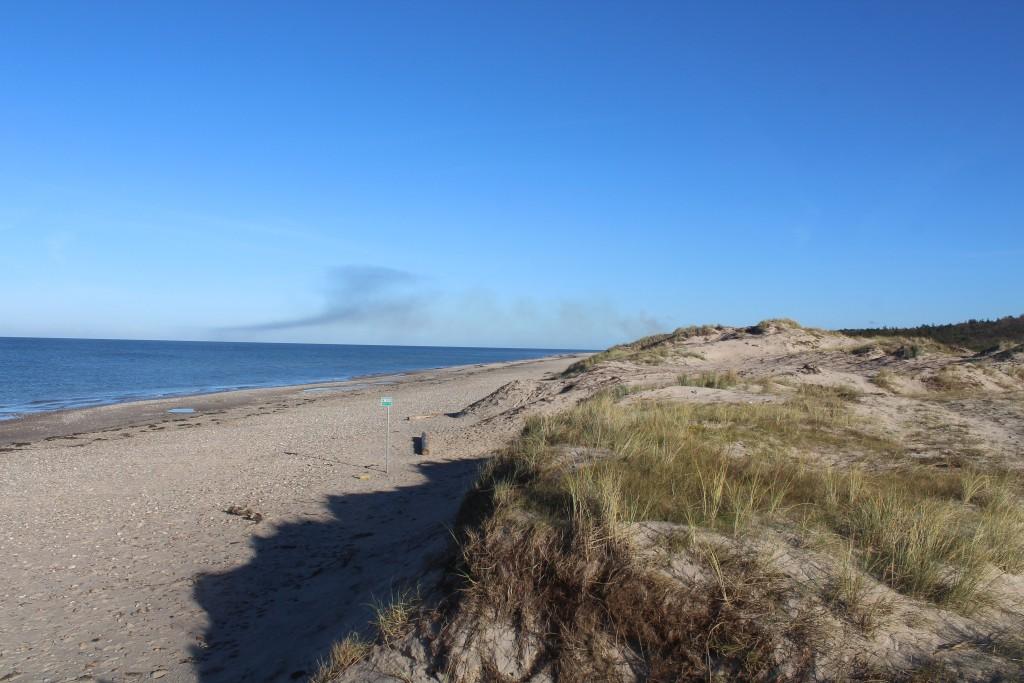 Kattegat Kyst. Udsigt mod øst mod Tisvildeleje. Foto i retning