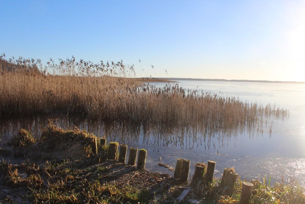 Udsigt mod syd mod udløbet af Ramløse Å i arrsø. foto den 7. januar 2018 af Erik K Abrahamsen.