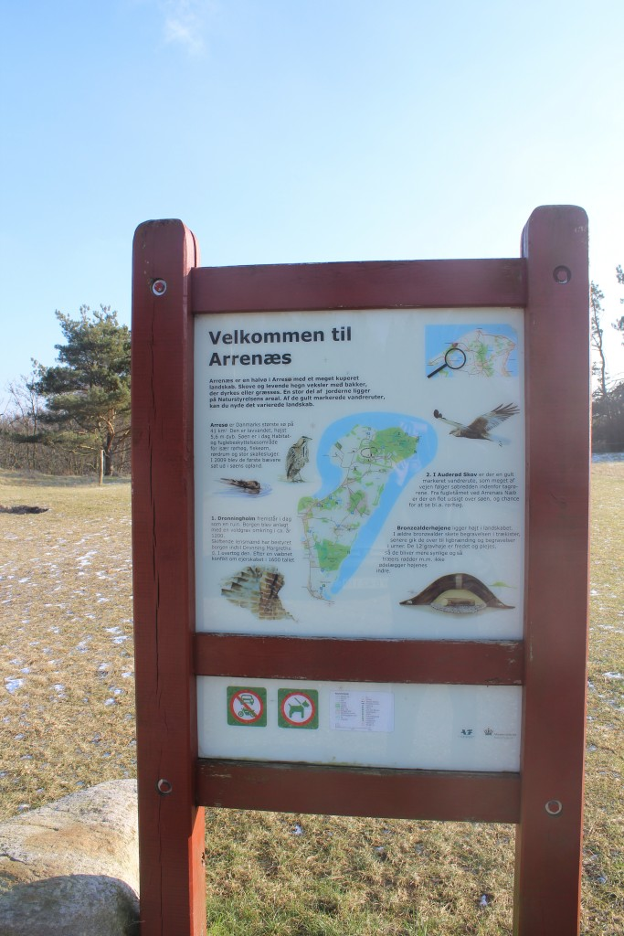 Arrenæs Peninsula. Plate close to Arresø. Photo 9. february 2018 by Erik K Abrahamsen.