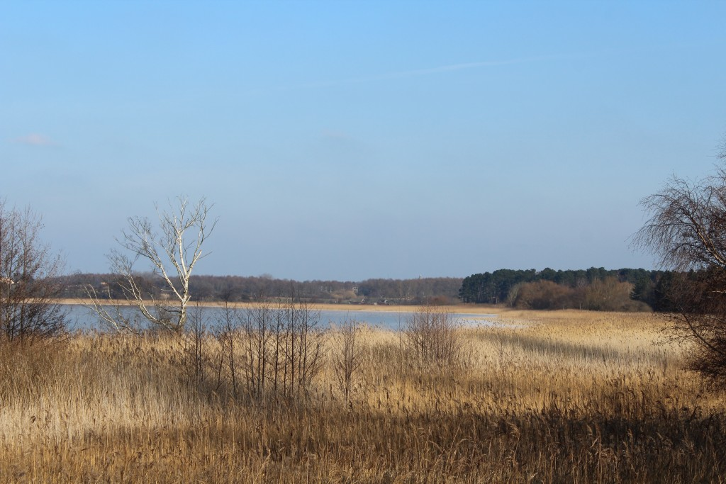 View to Arrsø lake and Arrenæs Peninsula. Phoot in direction east close to Auderødvej. Phoot 9. february 2018 by erik K Abrahamsen.