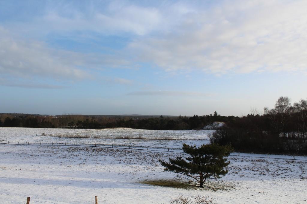Panorama view from Syvhøje bronze alder gravhøje mod Asserbo, Tisvilde Hegn og kattegat helt ude i horisonten