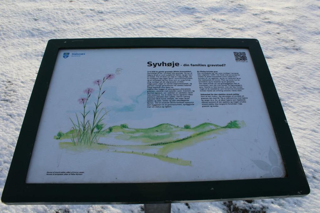 Syvhøje, Melby. Informationstave ved bronzealder gravhøje. Foto 16. februar 2018 af Erik K Abrahamsen.