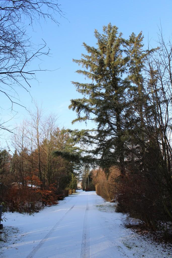 Melby. Min vej ud for mit fritdshus hvor jeg har boet permanent siden 2012. Foto i retning vest den 16. februar 2018 kl ca 9.30 af Erik K Abrahamsen