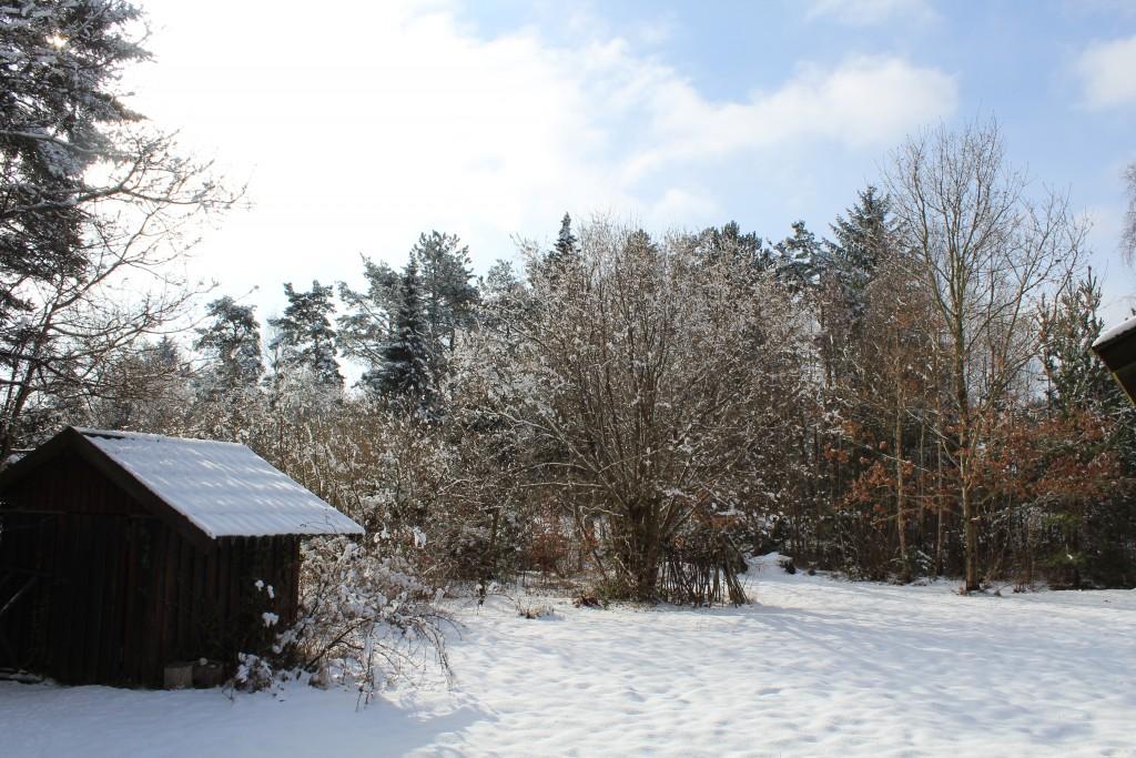 Udsigt mod min have, mit redskabskur og kvisthytte under nøødetræ byget af min nevø og hans børn. Foto iretning syd den 10 marts 2018 af Erik K Abrahamsen.