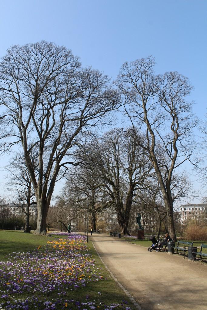 Ørsted Park. View on top of Bastion. Photo 9. april 2018 by Erik K Abrag´hamden.