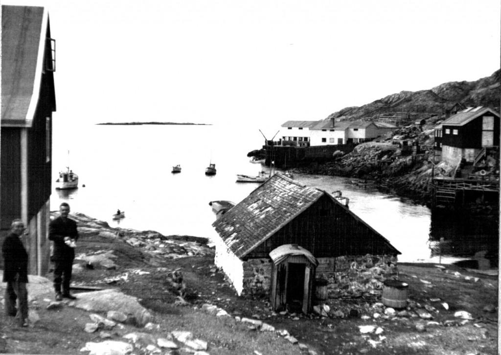 Udsigt fra Arsuk mod vest mod Davidsstrædet. Foto1961.