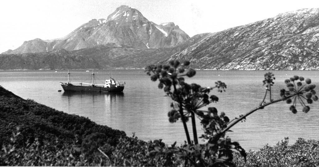 Britania i Arsuk Fjord ud for Flådestation grønnedal.