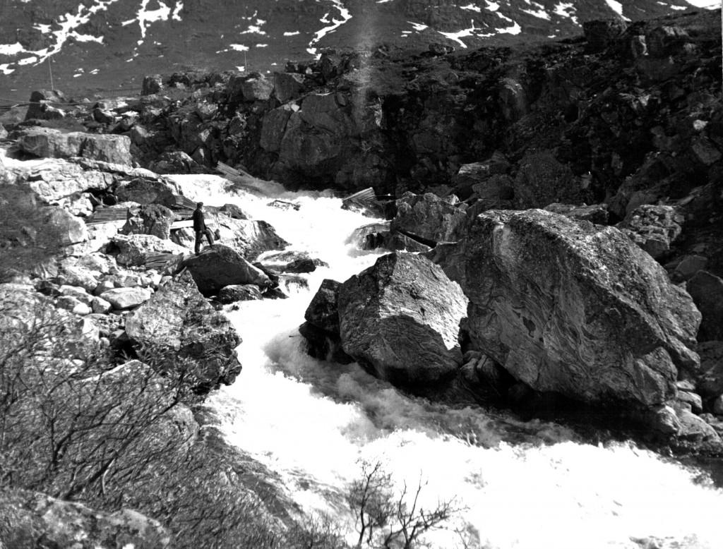Mennesket og naturen. Bryggerens Elv der løber gennem Grønnedalen ud i Arsuj Elv. Foto 1961.