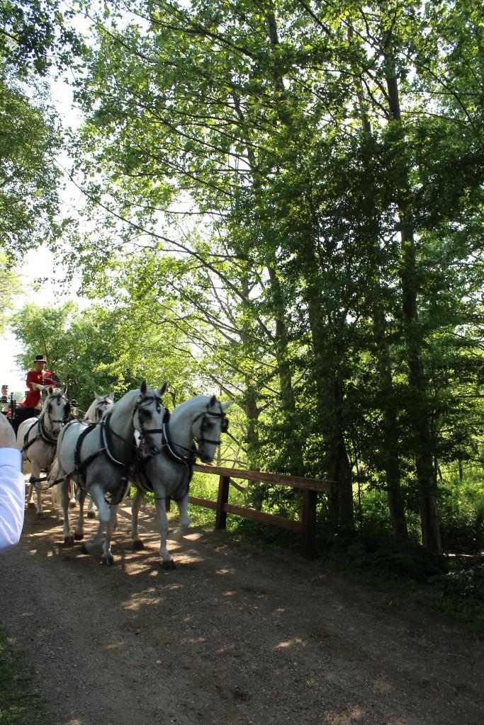Dronning Margrethe og Miljømonister Jakob Ellemann-Jensen akoomer til Esrum Møllegård i karet med forspand af 4 hvide heste.