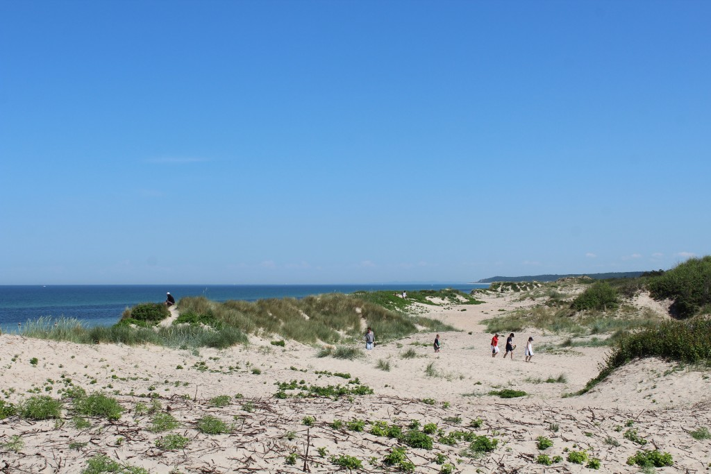 Liseleje Beach. View in direction east to Tisvilde Hegn and Tisvildeleje in horizon. Photo 2. jun 2018 at 1.45 pm by Erik K Abrahamsen.