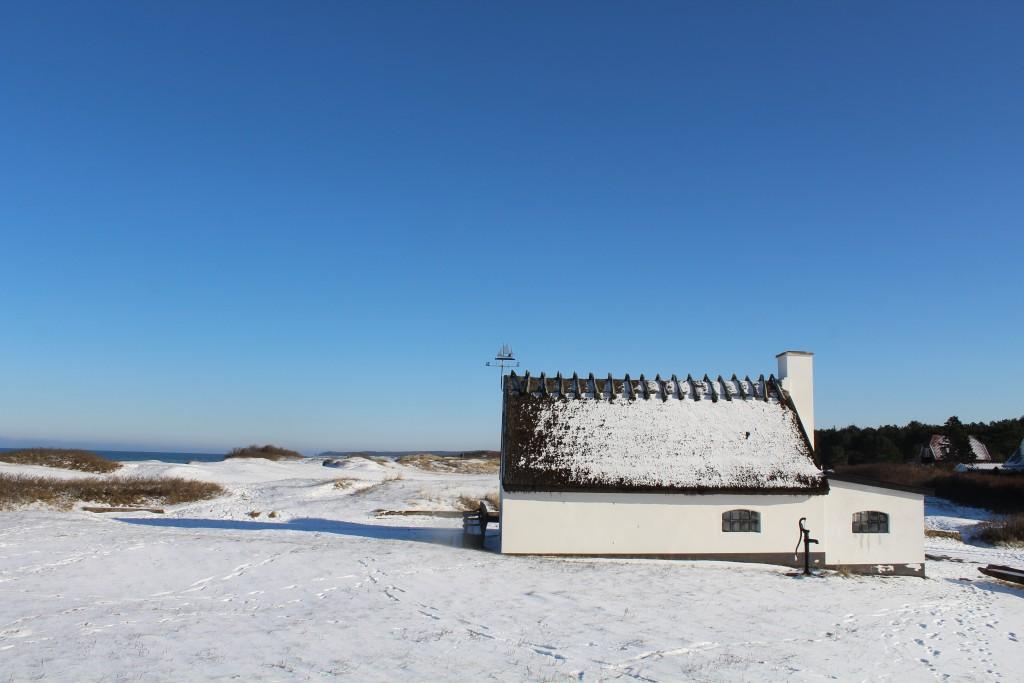 """Ishus ved Liseleje Strand  ca. 200 meter fra """"Pynten"""". Foto 5. februar 2015 af Erik K Abrahamsen"""