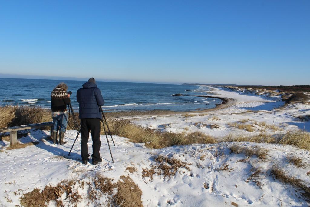 Udsigt over kattegat mod Tisvilde Hegn og Tisvildeleje. Foto i retning øst den 5. februar 2015 af Erik <k Abrahamsen
