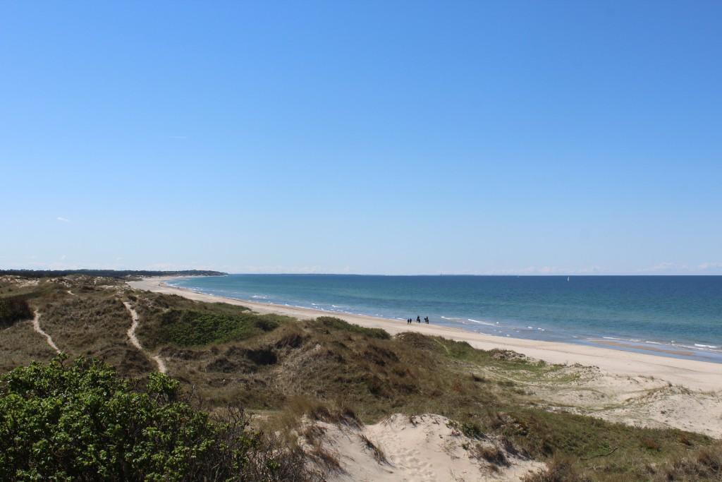 Kattegat Sea. Coastline at Troldeskoven at Tisvilde