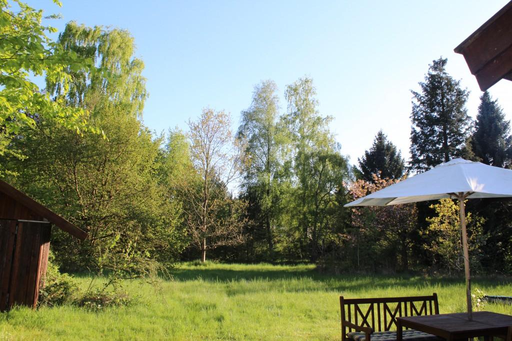 Min have i mit hus i Melby, Nordsjælland. Foto den 15. maj 2015 af Erik K Abrahamsen